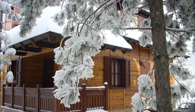 Vila-Bajka-Tara-zima-s1