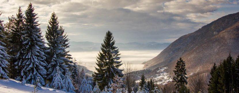 planina-tara-zimovanje (12)