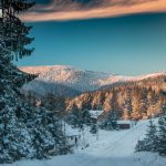 planina-tara-zimovanje (24)