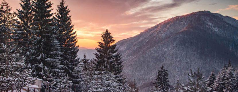 planina-tara-zimovanje (27)