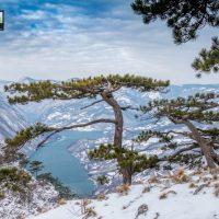 planina-tara-zimovanje (36)