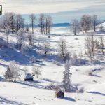 planina-tara-zimovanje (4)