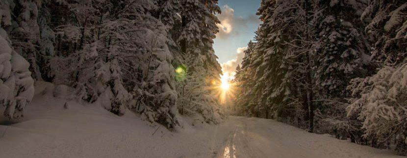 planina-tara-zimovanje (41)