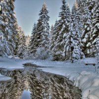 planina-tara-zimovanje (43)