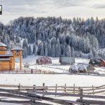planina-tara-zimovanje (8)