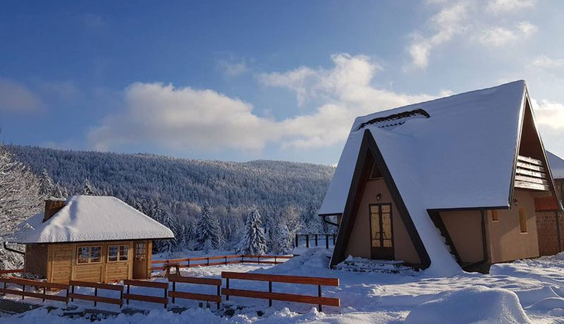 planinska-kuca-popovic-tara-oslusa-(3)