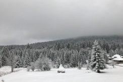 planinska-kuca-popovic-tara-oslusa-(9)