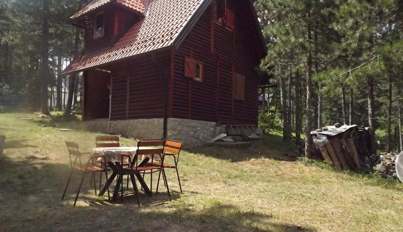 Vila-Tarska-oblica-kaludjerske-bare-s2