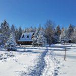 planinska-kuca-radivojevic-tara-oslusa-1