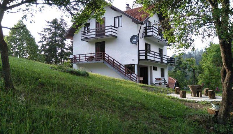 apartmani-na-tari-jarevac-7