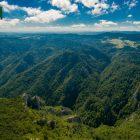 planina-tara-sokolina (5)