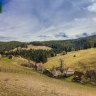 racanska-sljivovica-planina-tara (1)