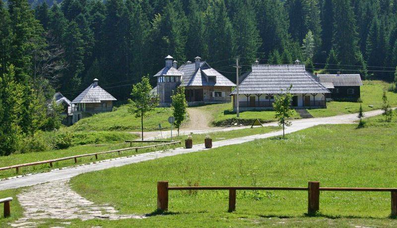 Predov-Krst-Tara-Smestaj-Lugarnica-2
