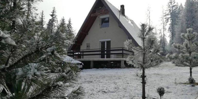vila-vetrovi-ruza-tara-zima-s1