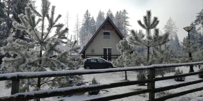 vila-vetrovi-ruza-tara-zima-s3