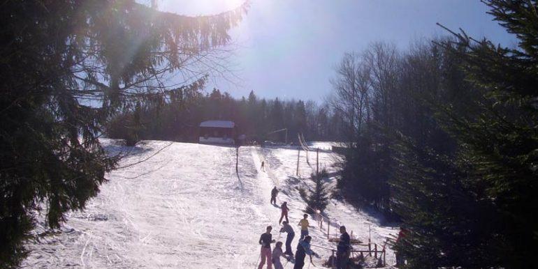 Tara-skijanje-Sljivovica