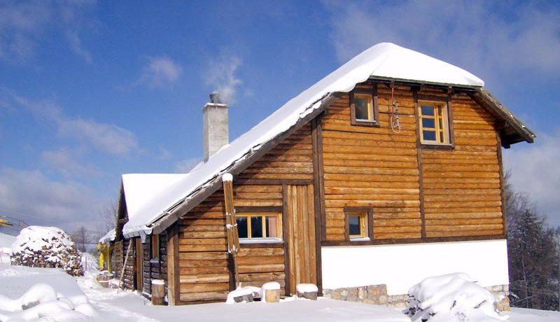 tara-vila-nemanja-zima3