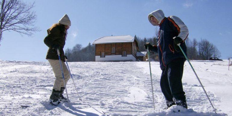 tara-vila-nemanja-zima4