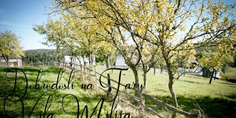 vila-milija-tara-racanska-sljivovica-s1