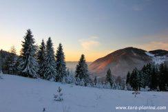 planinska-koliba-tara-zaovine-odmor-s11
