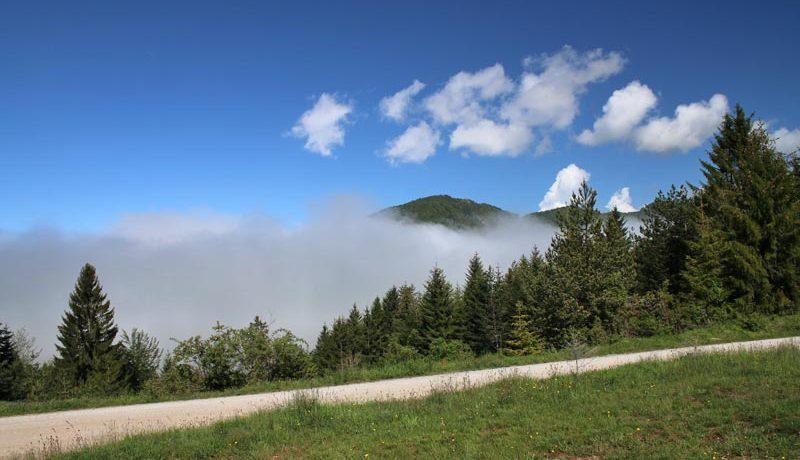 planinska-koliba-tara-zaovine-odmor-s7