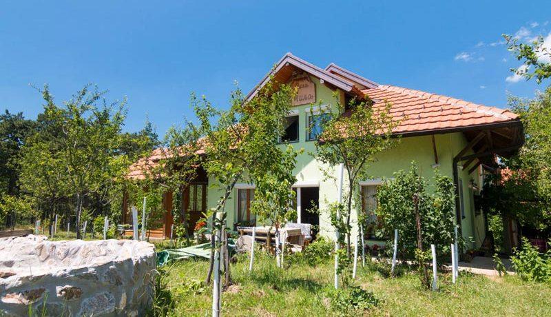 vila-milja-tara-kaludjerske-bare-9
