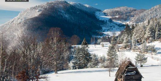 planina-tara-zimovanje (22)