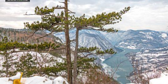 planina-tara-zimovanje (31)