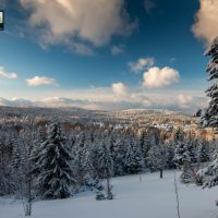 planina-tara-zimovanje (40)