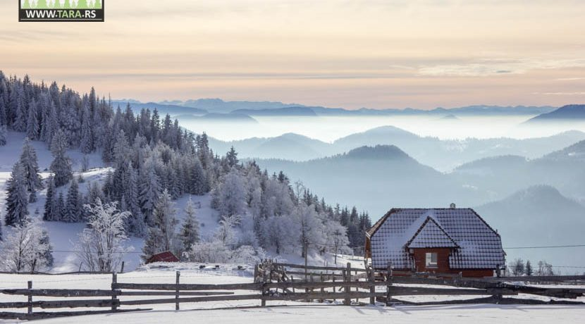 planina-tara-zimovanje (9)