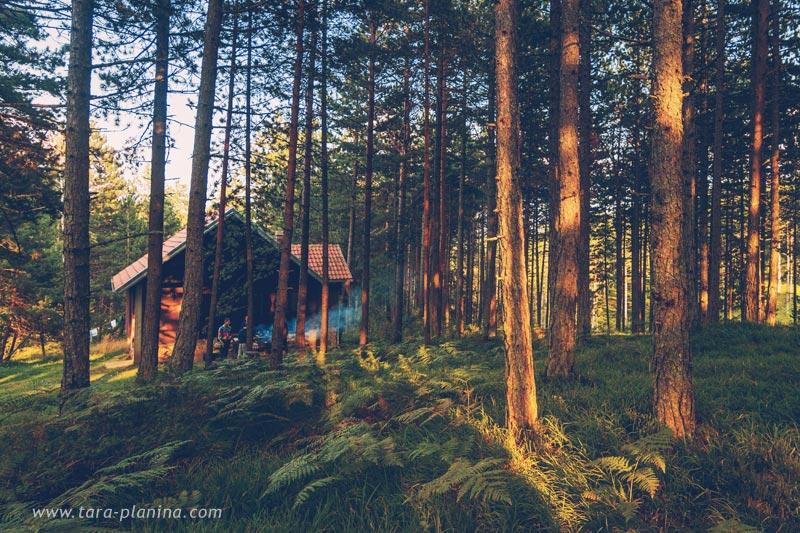 (Srpski jezik) Šumska Kuća
