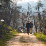 planina-tara-planinarenje-pesacke-staze (2)