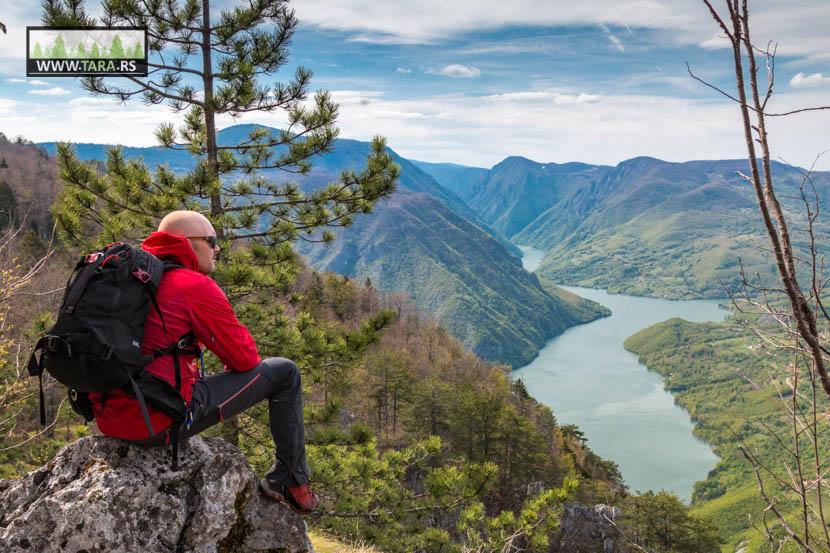 Aktivnosti na Tari – Odmor na planini Tari