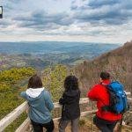 planina-tara-planinarenje-pesacke-staze (8)