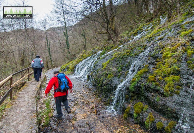 planina-tara-planinarenje-pesacke-staze (9)