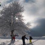 tara-skijanje-splitboarding (18)