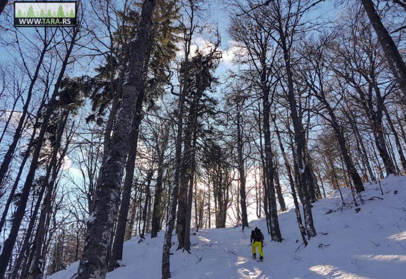 tara-skijanje-splitboarding (2)