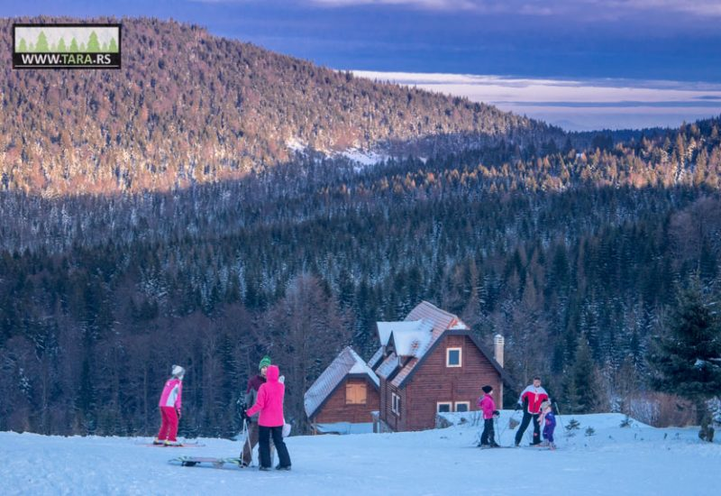 tara-zaovine-sekulic-skijanje-ski-staza (11)
