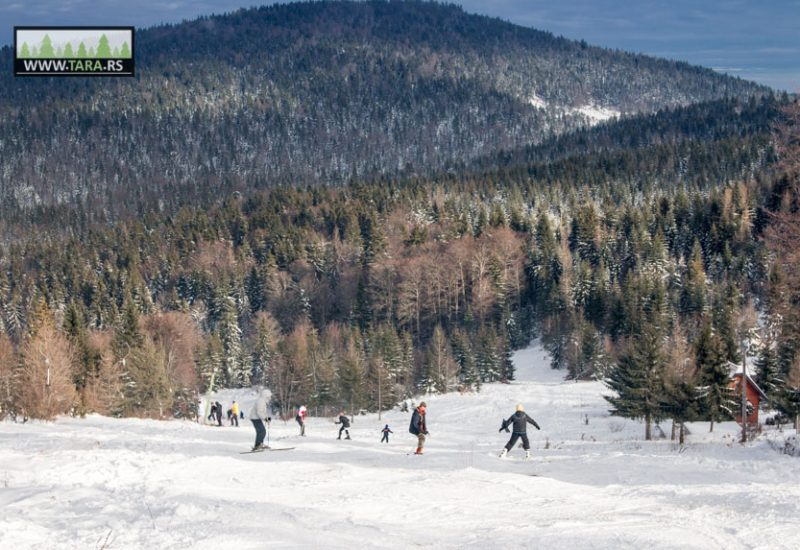 tara-zaovine-sekulic-skijanje-ski-staza (6)