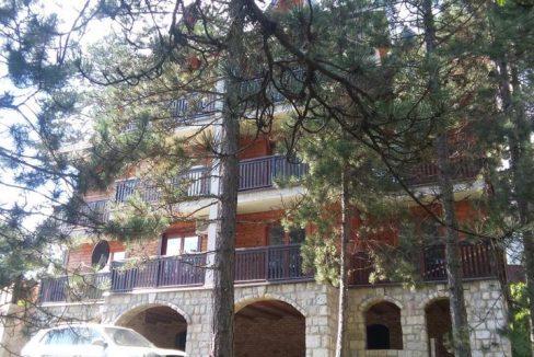 apartmani-sredojevic-tara-kaludjerske-bare-2