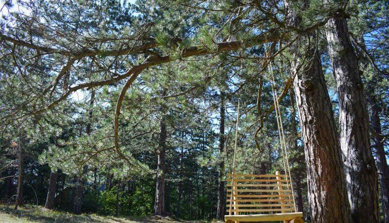 tara-hiking-center-kaludjerske-bare-5