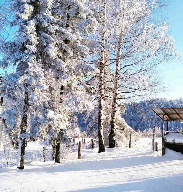 vikendica-tara-kaludjerske-bare-smestaj-odmor-13