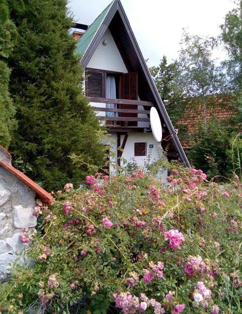vila-tara-kaludjerske-bare-apartmani-5