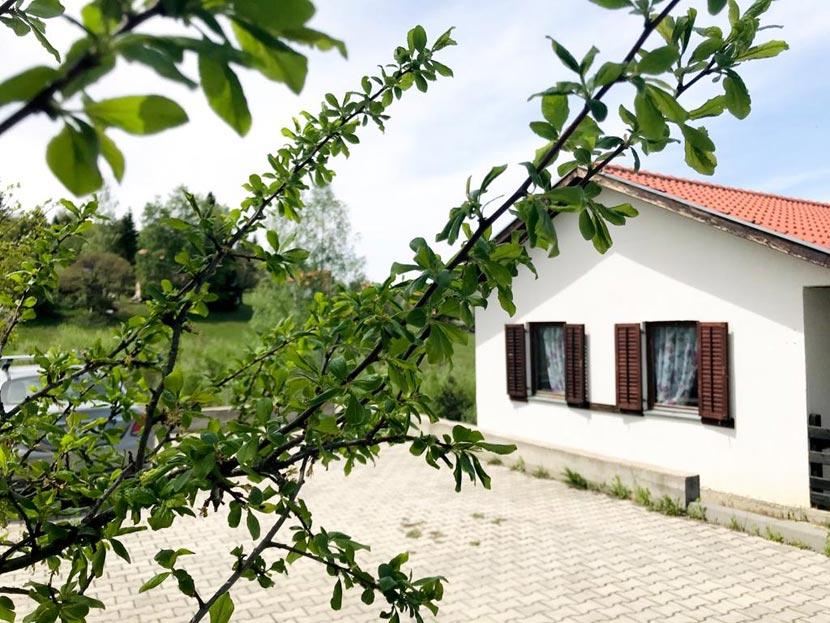 (Srpski jezik) Kuća Andrea