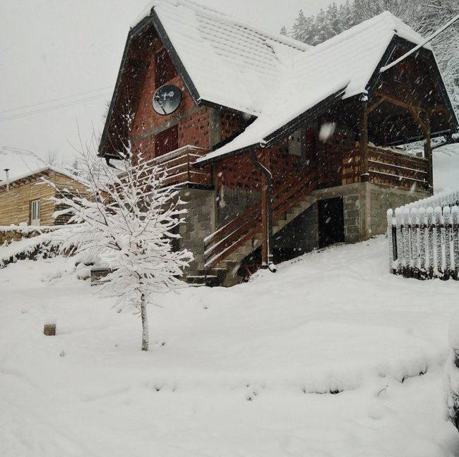 vikendica-mitrovic-zaovine-tara-2