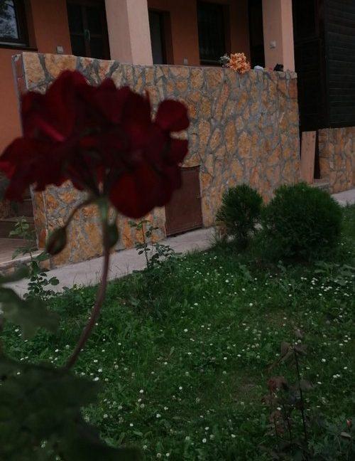 apartmani-bozic-tara-smestaj (1)